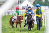 Pony racers warming up with their trainers and horses before the — Stock Photo