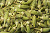Okra Crop — Stock Photo