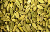 Cardamom Seeds — Stock Photo