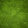 Grass Texture — Stock Photo #13289313
