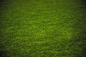 трава игровая площадка — Стоковое фото