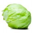 Iceberg Lettuce Alcapucci — Stock Photo #17972185