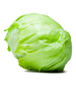 Iceberg Lettuce Alcapucci — Stock Photo
