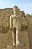 Estátua do faraó — Foto Stock