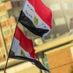 Egyptian Flags — Stock Photo