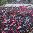 Egyptian Protesting Against Muslim Brotherhood — Stock Photo