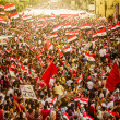 Egyptian Demonstration Against Muslim Brotherhood — Stock Photo