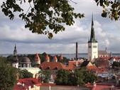 Tallinn — Stockfoto