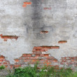 Derelict wall — Stock Photo #27227879