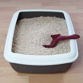 Cat litter box — Stock Photo