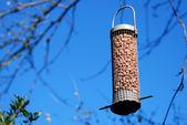 Bird feeder full of peanuts hanging against a blue sky — Стоковое фото