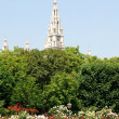 Vienna's Rathaus (City Hall) beyond Volksgarten park — Stock Photo