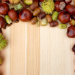 Border of natural fall material - acorns, horse chestnuts, beech — Stock Photo