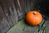 Ripe pumpkin by a weathered door — Stock Photo