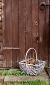 Basket of fir cones by a wooden door — Stok fotoğraf