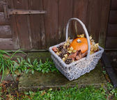 Basket with pumpkin, dry leaves and fir cones on a rustic step — Stock Photo