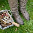 Woman's winter boots next to a basket of autumn leaves — Stock Photo