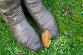 Foglia caduta poggia su stivali invernali di una donna — Foto Stock