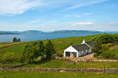 Cottage on the Gret Cumbrae island — 图库照片