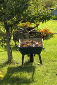 Chores in the garden — Stock Photo