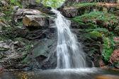 şelale orman uzun pozlama arka — Stok fotoğraf
