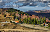 Autumn colorful trees at Osogovo mountain peak Ponikva — Stock Photo