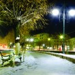Boulevard in the snow - Stock Photo