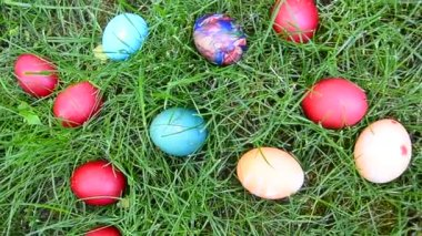 Easter egg hunting in grass, closeup — Vidéo