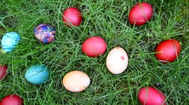 Easter egg hunting in grass, closeup — Stockvideo