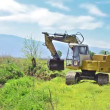 Excavator bulldozer standing -  