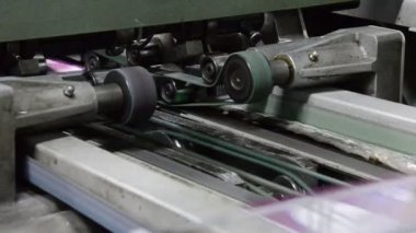 Fábrica da impressão de planta — Vídeo stock