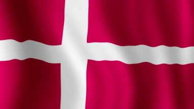 Danish Flag - looping, waving, panning, — Stock Video