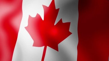 Canadian Flag - looping, waving, panning, — Stock Video