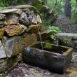 Stock Video: HD: Mineral Water Spring in Forest,