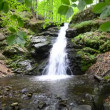 Stock Video: Waterfall in Tropical Paradise (HD Loop), Tropical waterfalls in lush forest