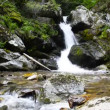 Stock Video: Waterfall in deep forest, Amazing view on waterfall, Macedonia