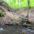 Stock Video: Waterfall in forest Nature background in ecological cleenvironment deep forest, panning shoot