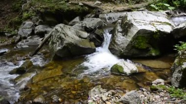 Mountain stream, Macedonia, Ecological clean environment water flow stream in Macedonia (with sound) — Stock Video