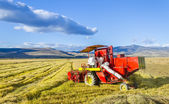Working Harvesting Combine in the Field of Wheat, Rice — Stock Photo