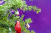 Vánoční koule a světla v zelený strom — Stock fotografie