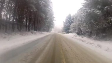 Driving in the winter fog — Wideo stockowe