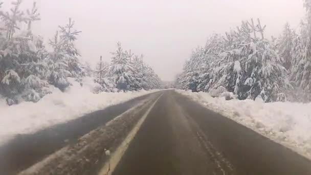 Conducir en la nieve — Vídeo de stock