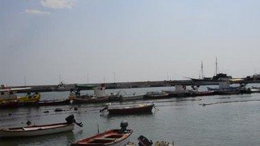 Fiskebåtarna i hamnen — Stockvideo