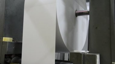Huge roll of paper in feeder end on a web set bases printing machine — Stock Video