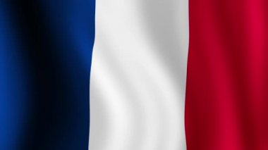 France Flag — Stock Video