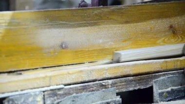 Cutting wood by electric saw — Stock Video