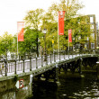 Amsterdam bridge — Stock fotografie #13614102