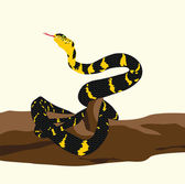 Snake and log — Stock Vector