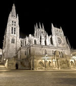 Burgos Cathedral — Stock Photo