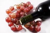 Grapes and wine bottle — Stock Photo